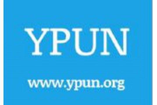 UN Young Professionals Programme 2020